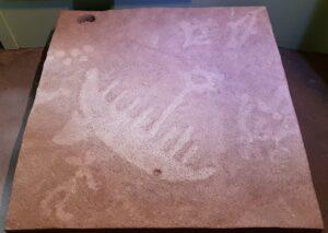 boat petroglyph